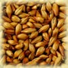 Cara Ruby malt 50 EBC Castle Malting 1kg