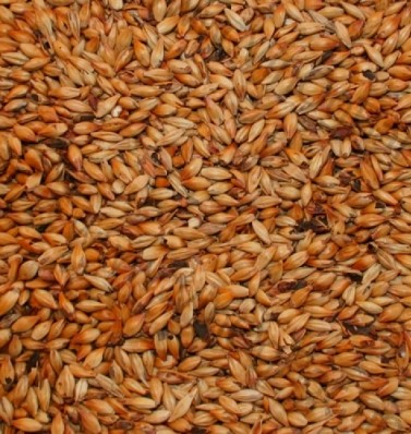 Brown malt Crisp Malting 120-150 EBC 1 kg